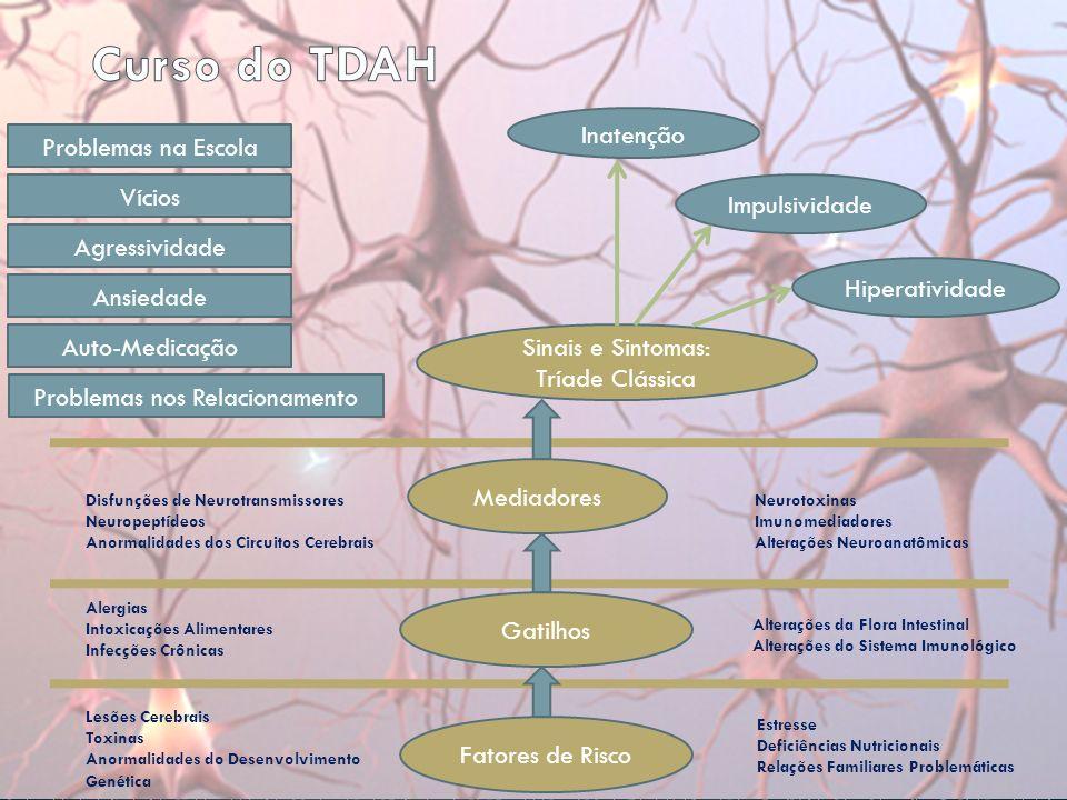 Lesões Cerebrais Toxinas Anormalidades do Desenvolvimento Genética Fatores de Risco Estresse Deficiências Nutricionais Relações Familiares Problemáticas Gatilhos Alergias Intoxicações Alimentares Infecções Crônicas Alterações da Flora Intestinal Alterações do Sistema Imunológico Mediadores Disfunções de Neurotransmissores Neuropeptídeos Anormalidades dos Circuitos Cerebrais Neurotoxinas Imunomediadores Alterações Neuroanatômicas Sinais e Sintomas: Tríade Clássica Impulsividade Inatenção Hiperatividade Problemas na Escola Problemas nos Relacionamento Vícios Agressividade Ansiedade Auto-Medicação