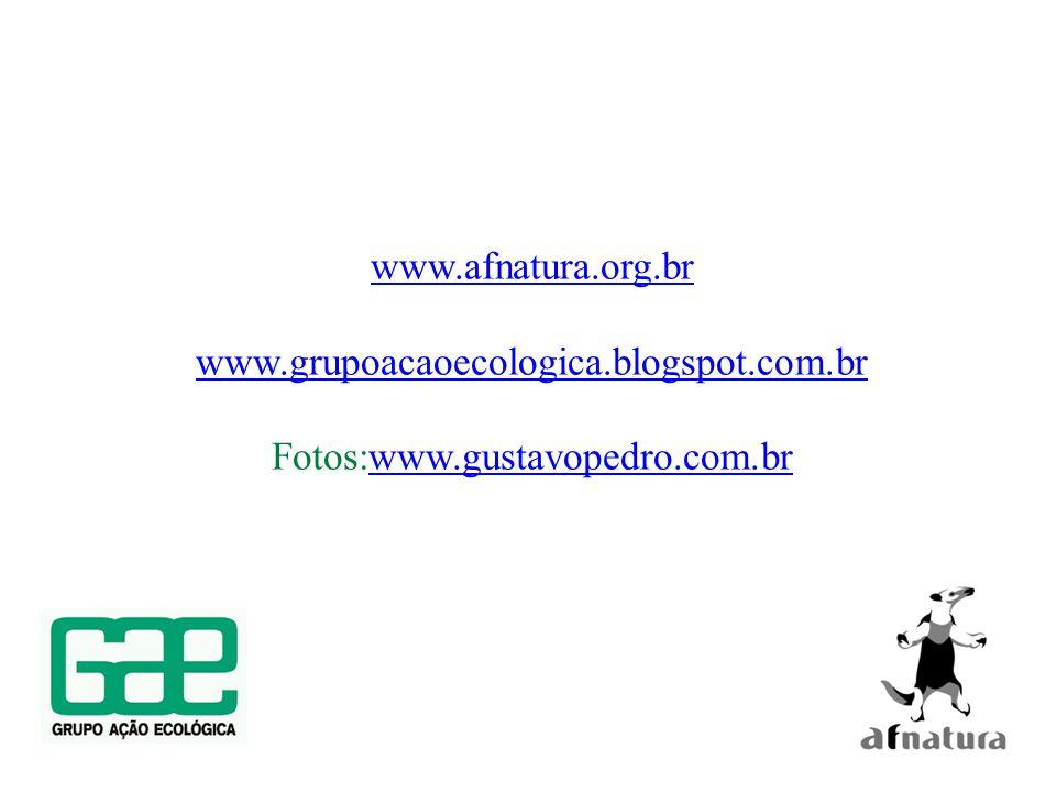 www.afnatura.org.br www.grupoacaoecologica.blogspot.com.br Fotos:www.gustavopedro.com.brwww.gustavopedro.com.br