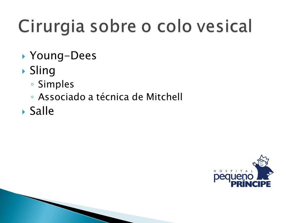 Young-Dees Sling Simples Associado a técnica de Mitchell Salle