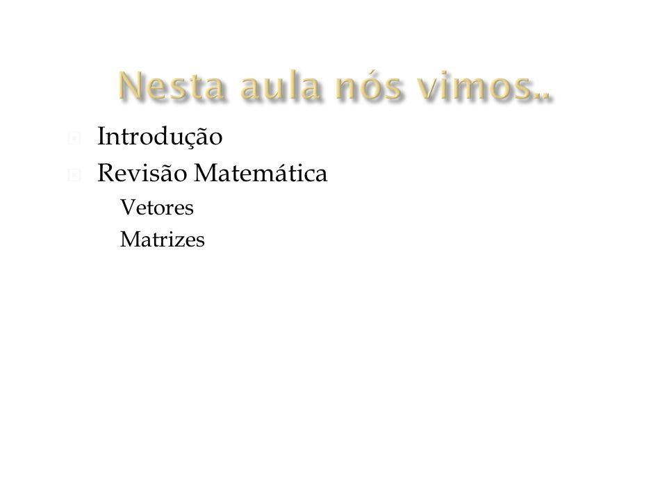 Introdução Revisão Matemática Vetores Matrizes