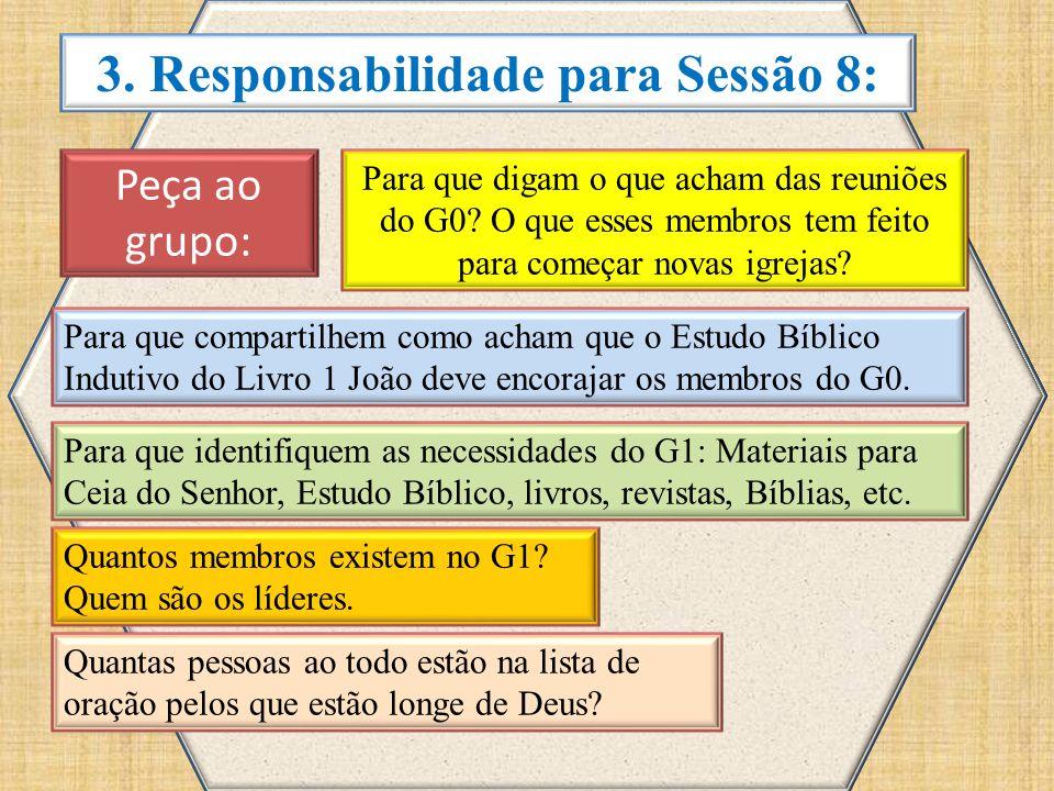 3.Responsabilidade para Sessão 8: Peça ao grupo: Para que digam o que acham das reuniões do G0.
