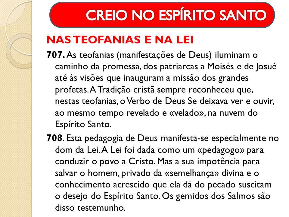 NAS TEOFANIAS E NA LEI 707. As teofanias (manifestações de Deus) iluminam o caminho da promessa, dos patriarcas a Moisés e de Josué até às visões que