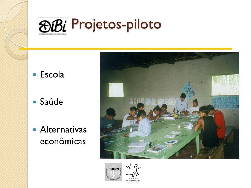 Projetos-piloto Escola Saúde Alternativas econômicas