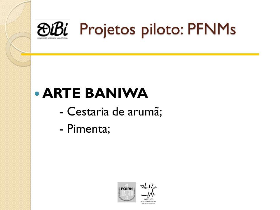 Projetos piloto: PFNMs ARTE BANIWA - Cestaria de arumã; - Pimenta;