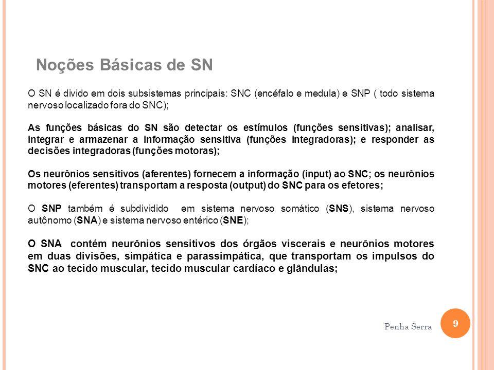 Noções Básicas de SN O SN é divido em dois subsistemas principais: SNC (encéfalo e medula) e SNP ( todo sistema nervoso localizado fora do SNC); As fu