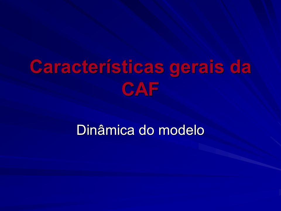 Características gerais da CAF Dinâmica do modelo