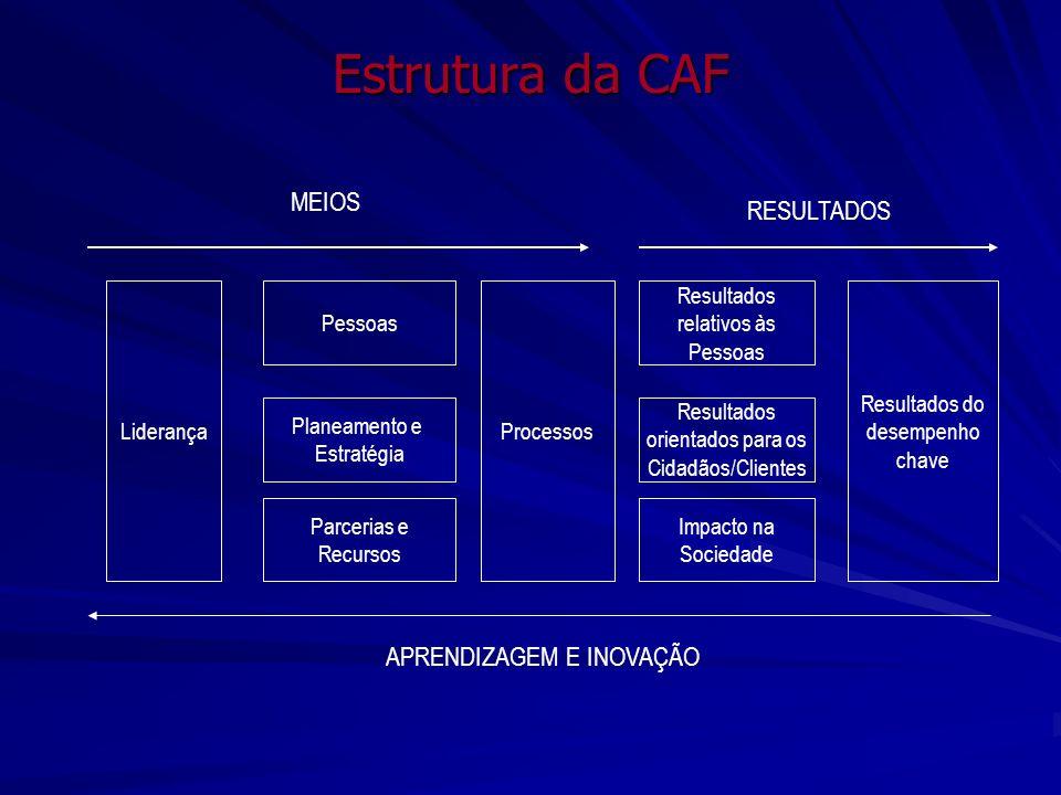 Estrutura da CAF Liderança Planeamento e Estratégia Pessoas Parcerias e Recursos Processos Resultados orientados para os Cidadãos/Clientes Resultados