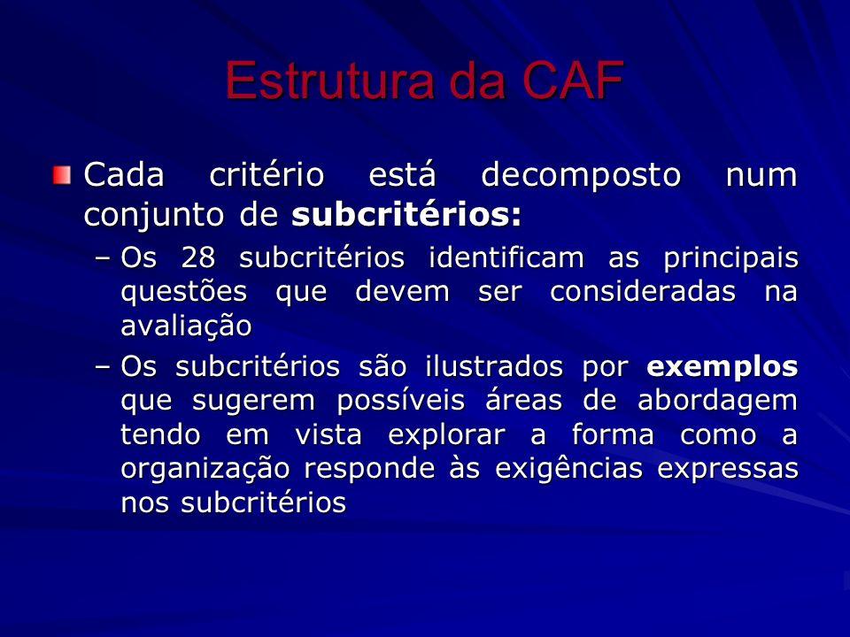 Estrutura da CAF Cada critério está decomposto num conjunto de subcritérios: –Os 28 subcritérios identificam as principais questões que devem ser cons