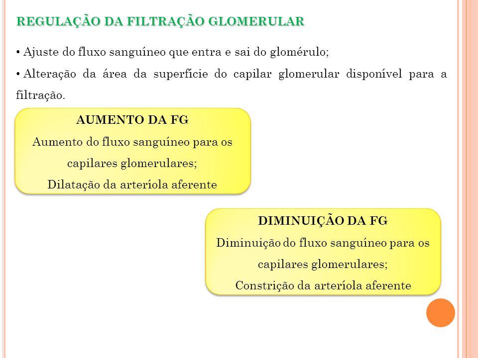REGULAÇÃO DA FILTRAÇÃO GLOMERULAR Ajuste do fluxo sanguíneo que entra e sai do glomérulo; Alteração da área da superfície do capilar glomerular dispon