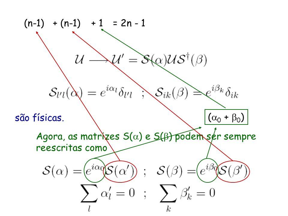para neutrinos de Dirac, só as fases da matriz de mistura que não podem ser eliminadas por transformações são físicas. Agora, as matrizes S( ) e S( )