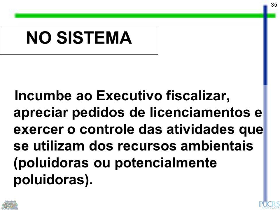 35 NO SISTEMA Incumbe ao Executivo fiscalizar, apreciar pedidos de licenciamentos e exercer o controle das atividades que se utilizam dos recursos ambientais (poluidoras ou potencialmente poluidoras).