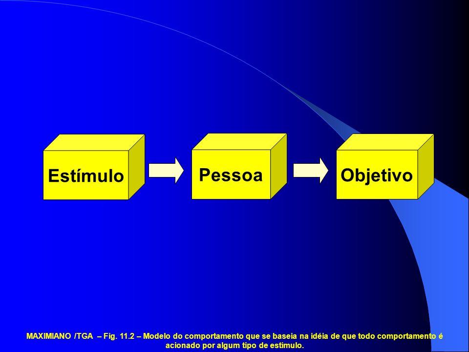 Estímulo Pessoa Objetivo MAXIMIANO /TGA – Fig.