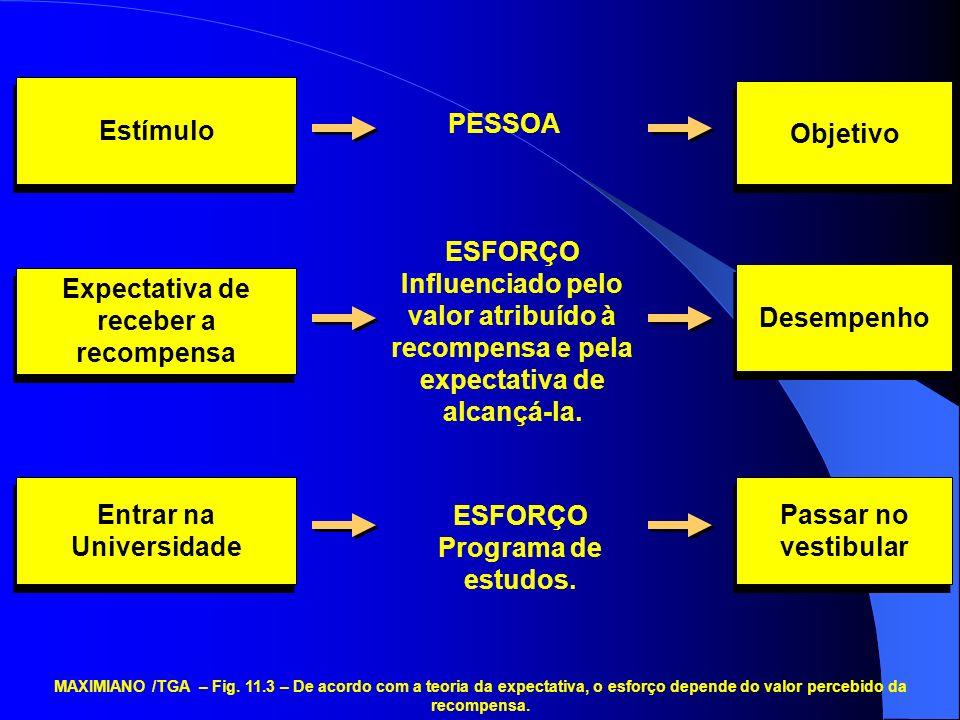 Estímulo PESSOA Objetivo Expectativa de receber a recompensa ESFORÇO Influenciado pelo valor atribuído à recompensa e pela expectativa de alcançá-la.