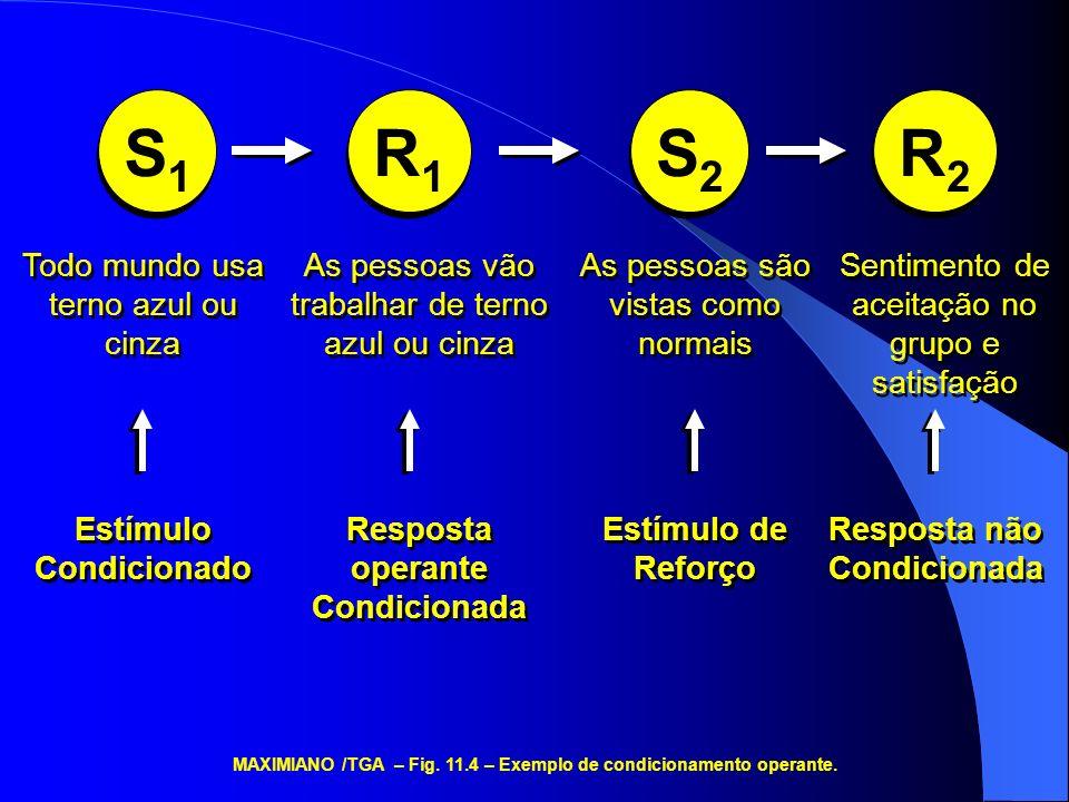 S1S1 S1S1 R1R1 R1R1 S2S2 S2S2 R2R2 R2R2 Todo mundo usa terno azul ou cinza Estímulo Condicionado As pessoas vão trabalhar de terno azul ou cinza Resposta operante Condicionada As pessoas são vistas como normais Estímulo de Reforço Sentimento de aceitação no grupo e satisfação Resposta não Condicionada MAXIMIANO /TGA – Fig.