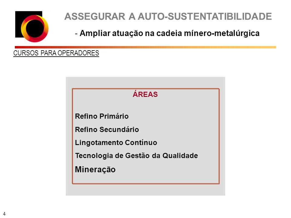 ASSEGURAR A AUTO-SUSTENTATIBILIDADE - Ampliar atuação na cadeia mínero-metalúrgica CURSOS PARA OPERADORES ÁREAS Refino Primário Refino Secundário Lingotamento Contínuo Tecnologia de Gestão da Qualidade Mineração 4