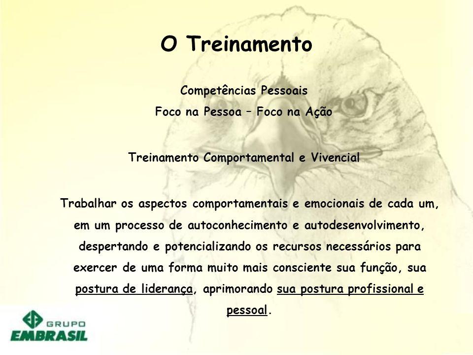 O Treinamento PROMOVER TREINAMENTO DE LIDERANÇA ( EMBRASIL / NATÁLIA)PROMOVER TREINAMENTO DE LIDERANÇA ( EMBRASIL / NATÁLIA) DESENVOLVER INSTRUMENTO D