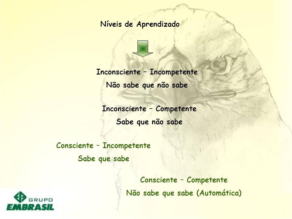 Níveis de Aprendizado Inconsciente – Incompetente Não sabe que não sabe Inconsciente – Competente Sabe que não sabe Consciente – Competente Não sabe q