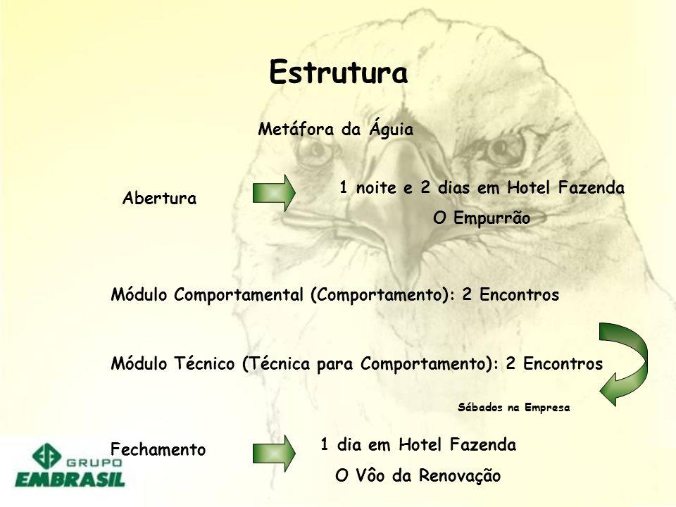 PROMOVER TREINAMENTO DE LIDERANÇA ( EMBRASIL / NATÁLIA)PROMOVER TREINAMENTO DE LIDERANÇA ( EMBRASIL / NATÁLIA) DESENVOLVER INSTRUMENTO DE AVALIÇÃO, FE