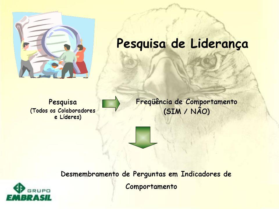 Pesquisa de Liderança Pesquisa (Todos os Colaboradores e Líderes) Freqüência de Comportamento (SIM / NÂO) Desmembramento de Perguntas em Indicadores d