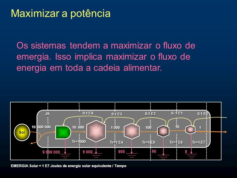 Maximizar a potência Os sistemas tendem a maximizar o fluxo de emergia. Isso implica maximizar o fluxo de energia em toda a cadeia alimentar. Sol 10 0