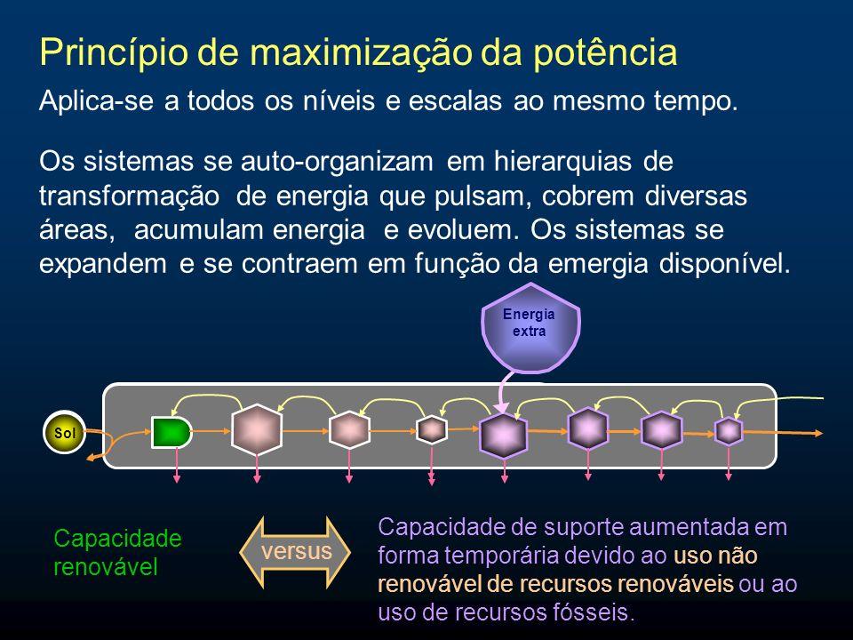 Princípio de maximização da potência Aplica-se a todos os níveis e escalas ao mesmo tempo. Sol Energia extra Capacidade renovável Capacidade de suport