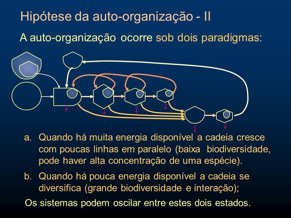 Hipótese da auto-organização - II A auto-organização ocorre sob dois paradigmas: a.Quando há muita energia disponível a cadeia cresce com poucas linha