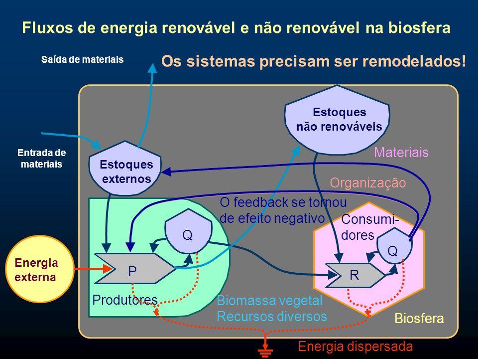 P Q Produtores Energia externa Organização Biosfera Consumi- dores R Q Materiais Biomassa vegetal Recursos diversos Energia dispersada Estoques extern