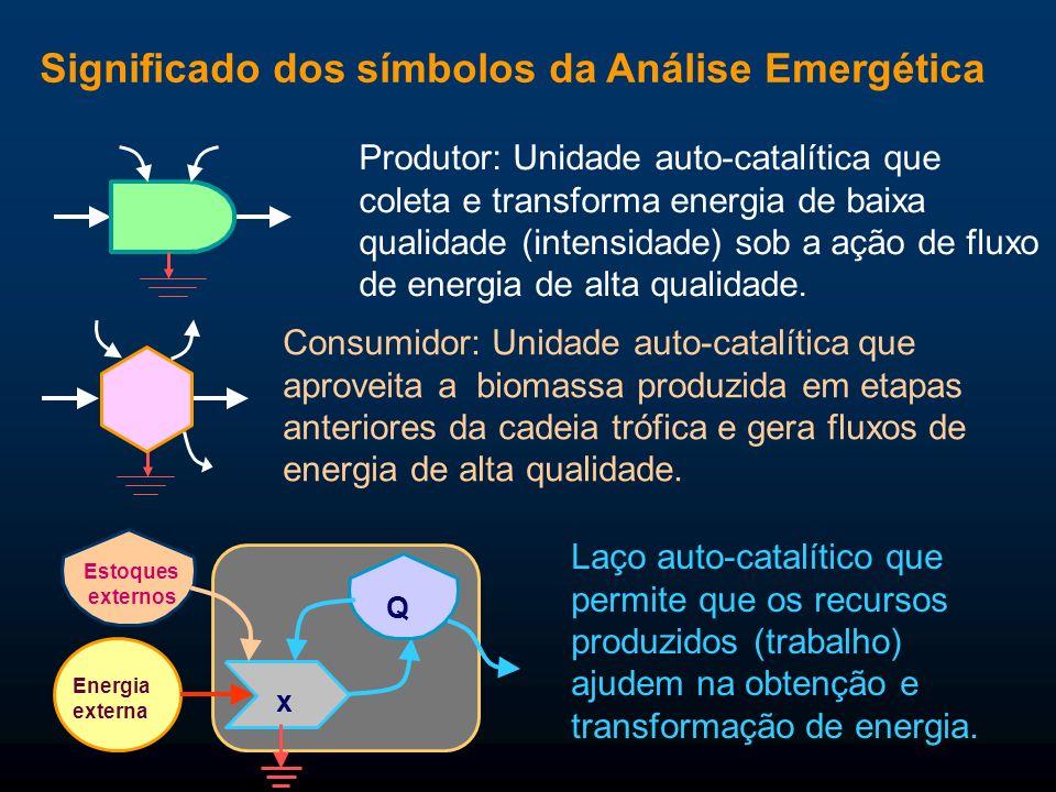 Significado dos símbolos da Análise Emergética Consumidor: Unidade auto-catalítica que aproveita a biomassa produzida em etapas anteriores da cadeia t