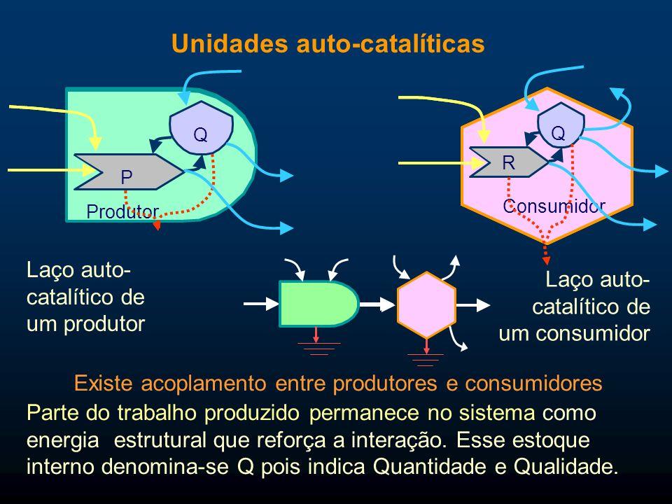 Unidades auto-catalíticas Parte do trabalho produzido permanece no sistema como energia estrutural que reforça a interação. Esse estoque interno denom