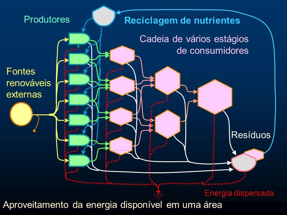 Consumidores de biomassa Energia dispersada Fonte externa de energia Produtores de biomassa Resíduos Nutrientes Decompositores Energia disponível na área Energia incorporada/Energia de cada etapa Transformidade 1 000 J 1 000 000 Joules de energia solar (sej) 1 000 000 J 100 J10 J 1 J0 J 1 000 sej/J Energia disponível em cada etapa 1 000 J 100 J 10 J1 J 10 000 sej/J 100 000 sej/J 1000 000 sej/J 999 000 J 900 J90 J 9 J 1 sej/J 1 000 000 J