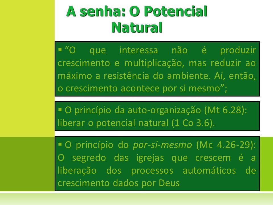 O que interessa não é produzir crescimento e multiplicação, mas reduzir ao máximo a resistência do ambiente. Aí, então, o crescimento acontece por si