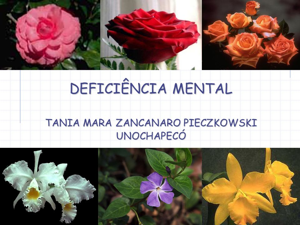 DEFICIÊNCIA MENTAL TANIA MARA ZANCANARO PIECZKOWSKI UNOCHAPECÓ