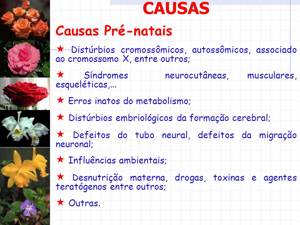 CAUSAS Causas Pré-natais Distúrbios cromossômicos, autossômicos, associado ao cromossomo X, entre outros; Síndromes neurocutâneas, musculares, esqueléticas,...