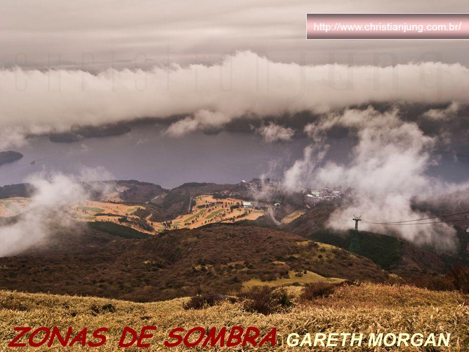 ZONAS DE SOMBRA GARETH MORGAN http://www.christianjung.com.br /