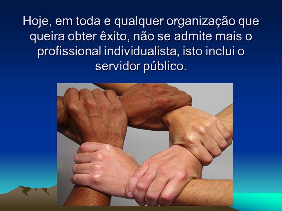 Hoje, em toda e qualquer organização que queira obter êxito, não se admite mais o profissional individualista, isto inclui o servidor público.