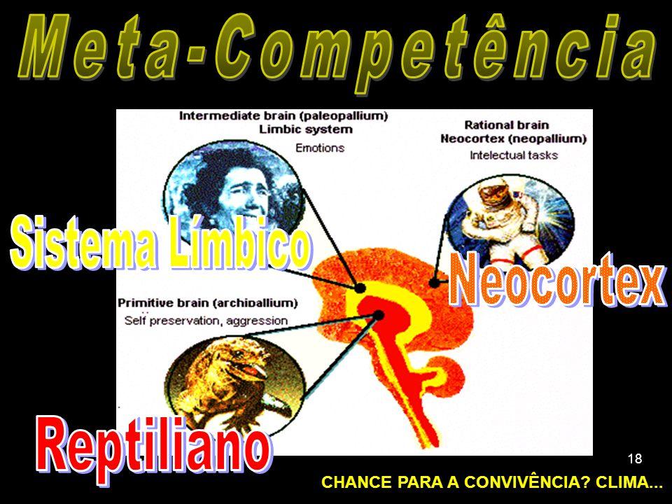 17 Justiça Social Paternidade Responsável (Inst.) CAOS HPM Sta.