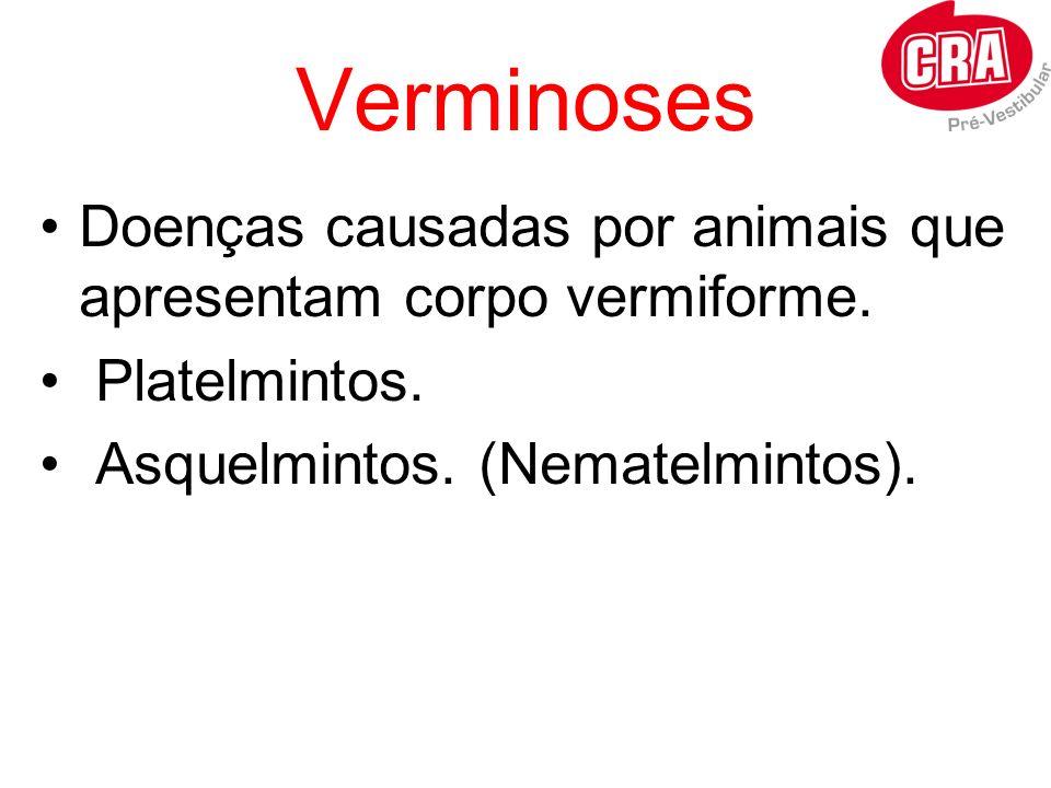 Verminoses Doenças causadas por animais que apresentam corpo vermiforme. Platelmintos. Asquelmintos. (Nematelmintos).