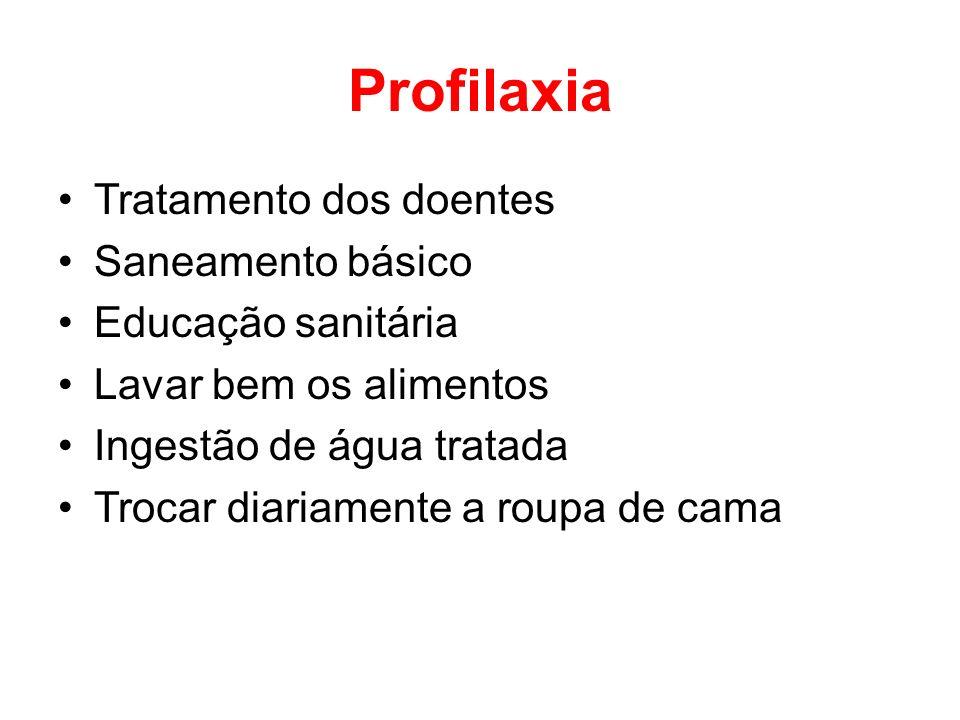 Profilaxia Tratamento dos doentes Saneamento básico Educação sanitária Lavar bem os alimentos Ingestão de água tratada Trocar diariamente a roupa de c