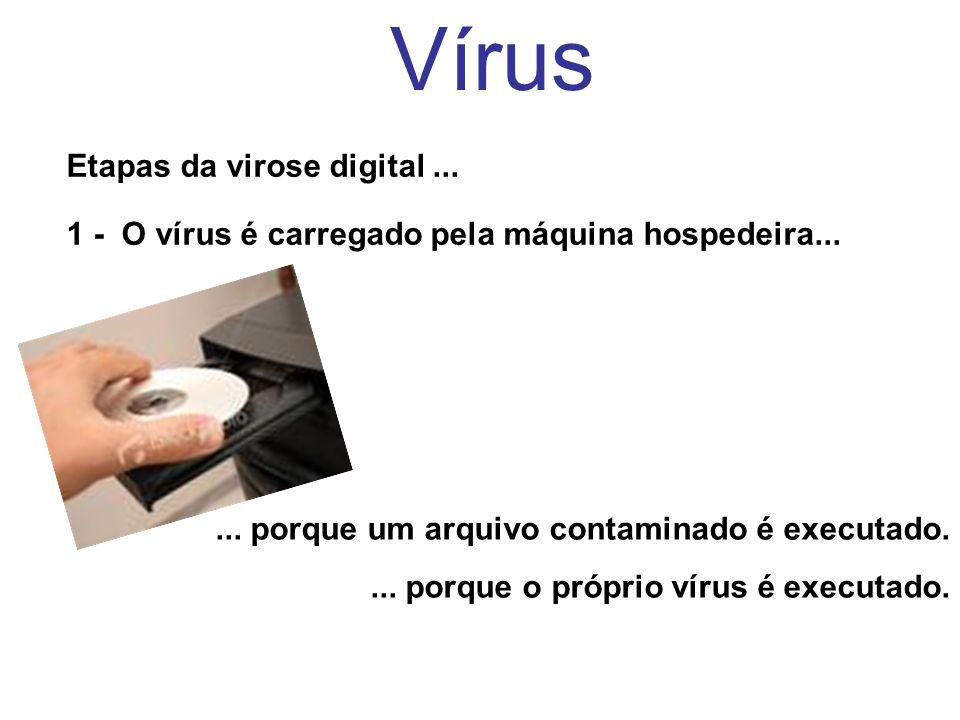 Vírus Etapas da virose digital... 1 - O vírus é carregado pela máquina hospedeira...... porque um arquivo contaminado é executado.... porque o próprio