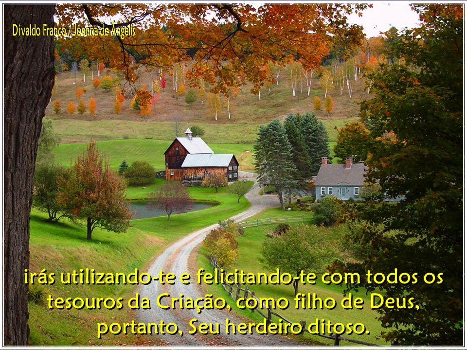 Se permaneces na infância espiritual não podes usufruir, por não saberes utilizar de todos os bens; todavia, se adquires a maioridade,