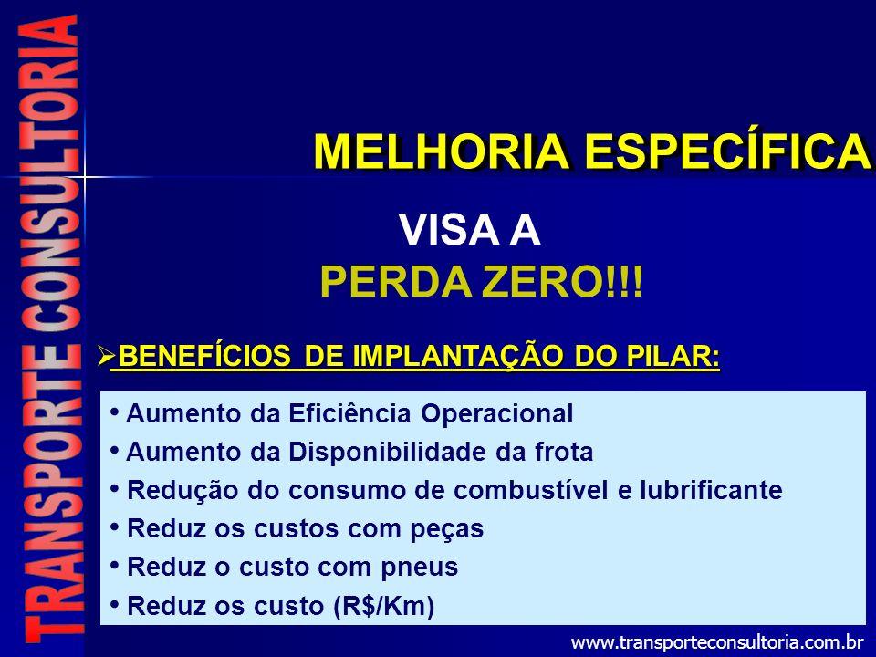 MELHORIA ESPECÍFICA VISA A PERDA ZERO!!! BENEFÍCIOS DE IMPLANTAÇÃO DO PILAR: BENEFÍCIOS DE IMPLANTAÇÃO DO PILAR: Aumento da Eficiência Operacional Aum