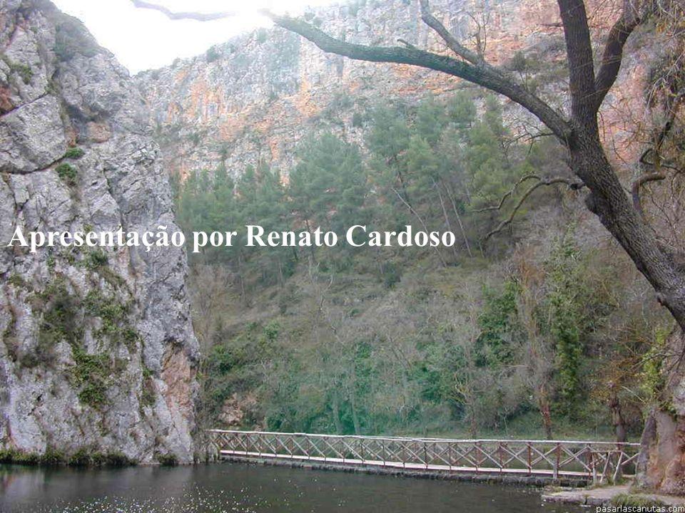 www.vivendobauru.com.br