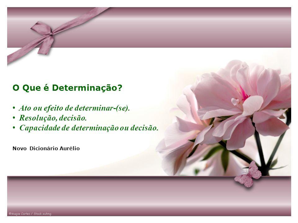 O Que é Determinação? Ato ou efeito de determinar-(se). Resolução, decisão. Capacidade de determinação ou decisão. Novo Dicionário Aurélio