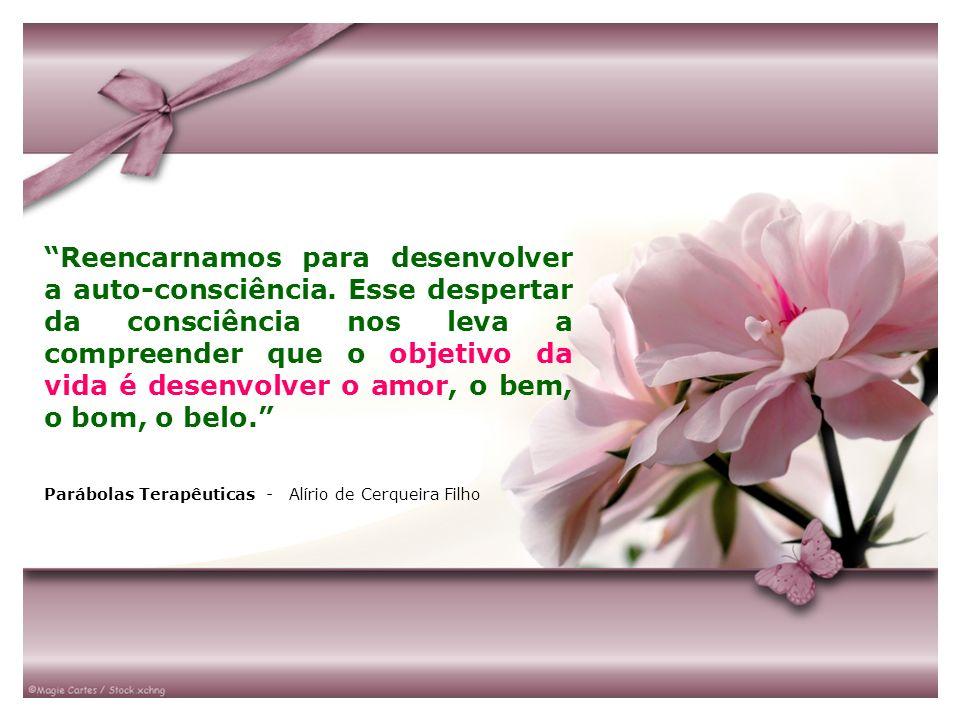 BUSCA DA FELICIDADE – 4˚ atributo da ação da vontade, é o que proporciona sentido para a vida humana.