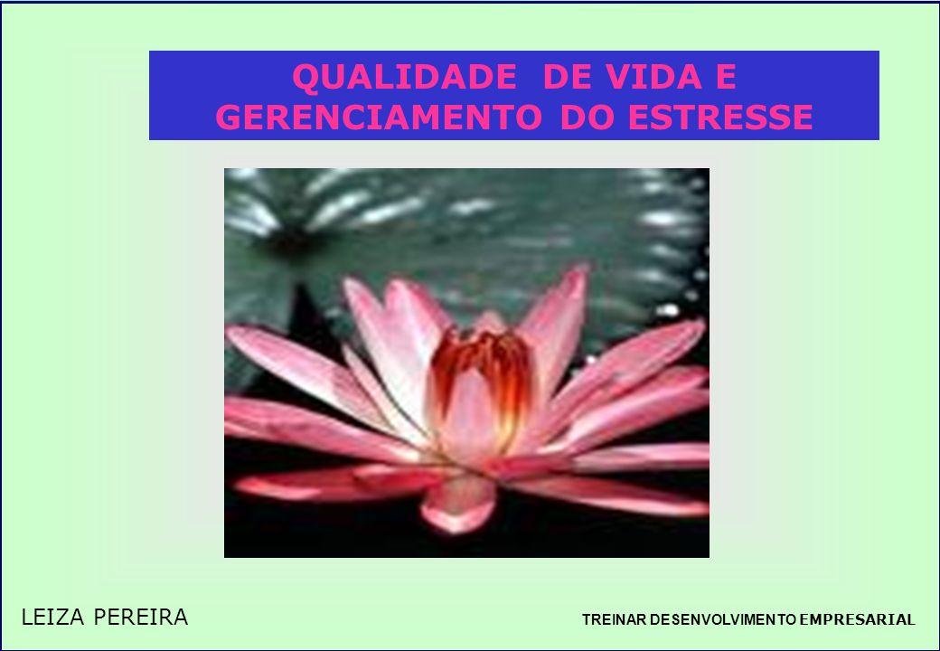 TREINAR DESENVOLVIMENTO EMPRESARIAL QUALIDADE DE VIDA E GERENCIAMENTO DO ESTRESSE TREINAR DESENVOLVIMENTO EMPRESARIAL LEIZA PEREIRA