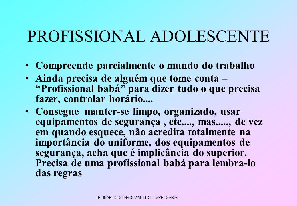 TREINAR DESENVOLVIMENTO EMPRESARIAL PROFISSIONAL ADOLESCENTE Compreende parcialmente o mundo do trabalho Ainda precisa de alguém que tome conta – Prof