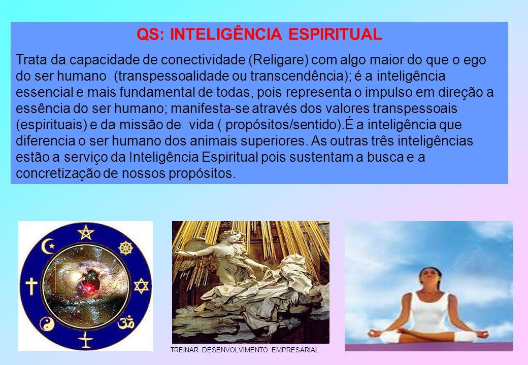 TREINAR DESENVOLVIMENTO EMPRESARIAL QS: INTELIGÊNCIA ESPIRITUAL Trata da capacidade de conectividade (Religare) com algo maior do que o ego do ser hum
