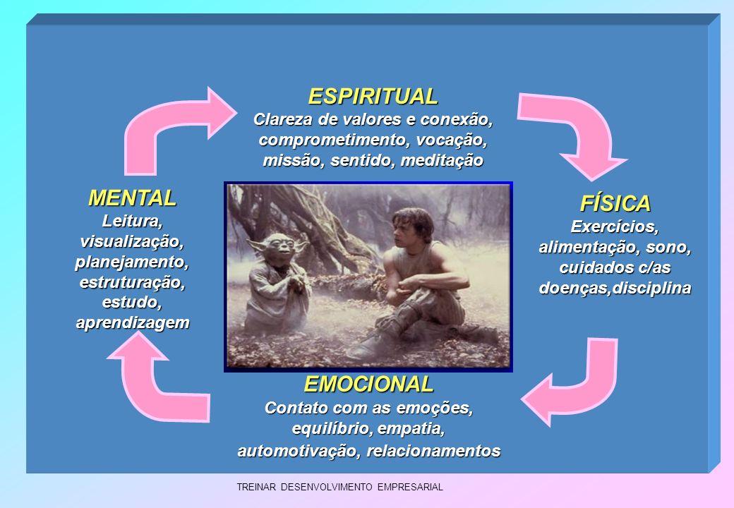 TREINAR DESENVOLVIMENTO EMPRESARIAL EMOCIONAL Contato com as emoções, equilíbrio, empatia, automotivação, relacionamentos ESPIRITUAL Clareza de valore