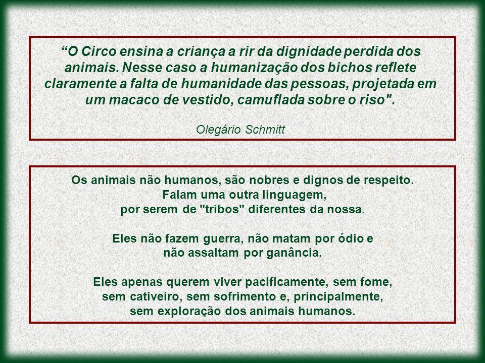 Os animais não humanos, são nobres e dignos de respeito. Falam uma outra linguagem, por serem de