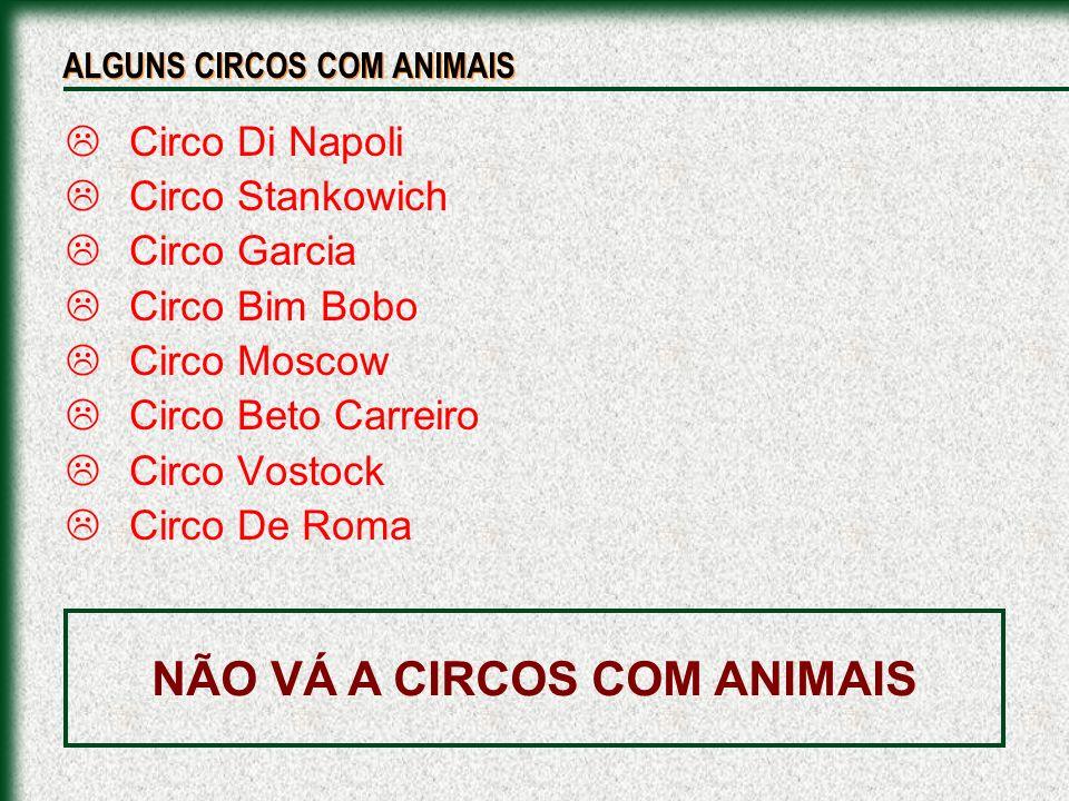 Circo Di Napoli Circo Stankowich Circo Garcia Circo Bim Bobo Circo Moscow Circo Beto Carreiro Circo Vostock Circo De Roma ALGUNS CIRCOS COM ANIMAIS NÃ